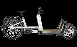 Esprit vélo BERGAMONT E-CARGOVILLE LJ ELITE D